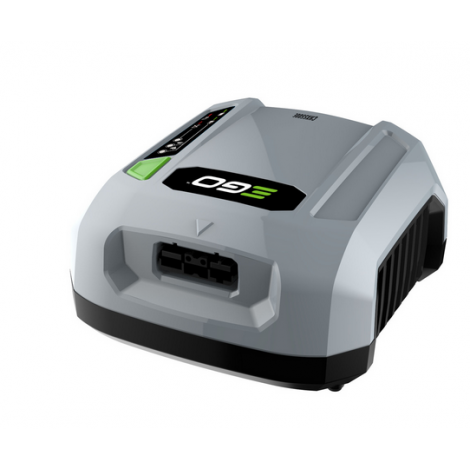 EGO Power Plus CHX5500E Commercial Charger